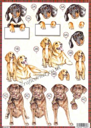 Dachshund Puppy Dog Die Cut 3d Decoupage Sheet From Craft UK Ltd